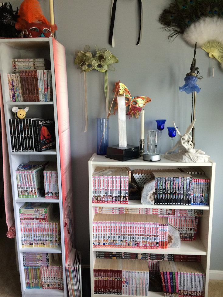 Manga shelves