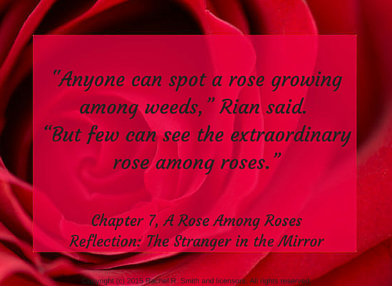 rose-among-roses